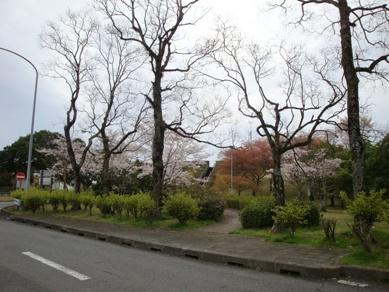 九州自動車道溝辺PA.jpg